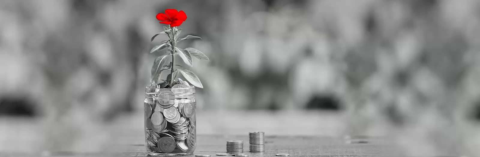 Online Savings Plan - Kotak Life